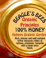 Beagle's Bees Hohepa Organic Gardens 100% Honey 250gm