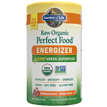 Garden of Life Raw Organic Perfect Food Energizer 279gm