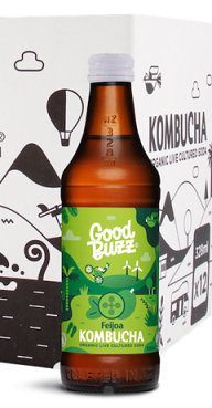Good Buzz Kombucha Feijoa 328ml
