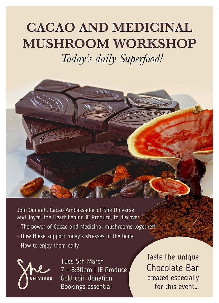 Cacao and Medicinal Mushroom Workshop