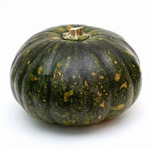 Vegetables - Super Market Squash