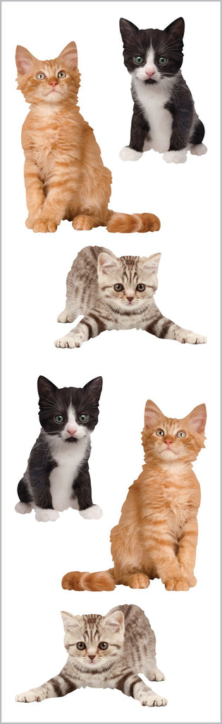 Adorable Kittens Stickers