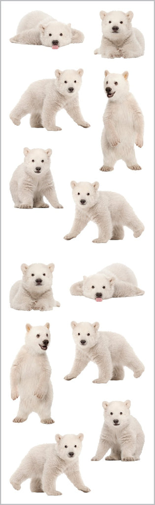 Polar Bear Cubs Stickers