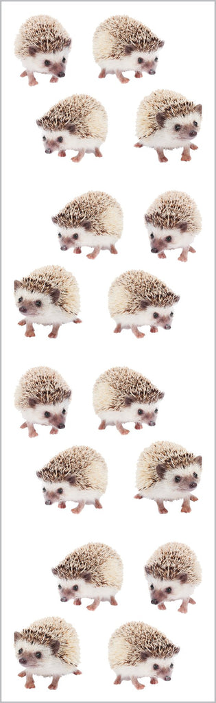 Hedgehogs Stickers