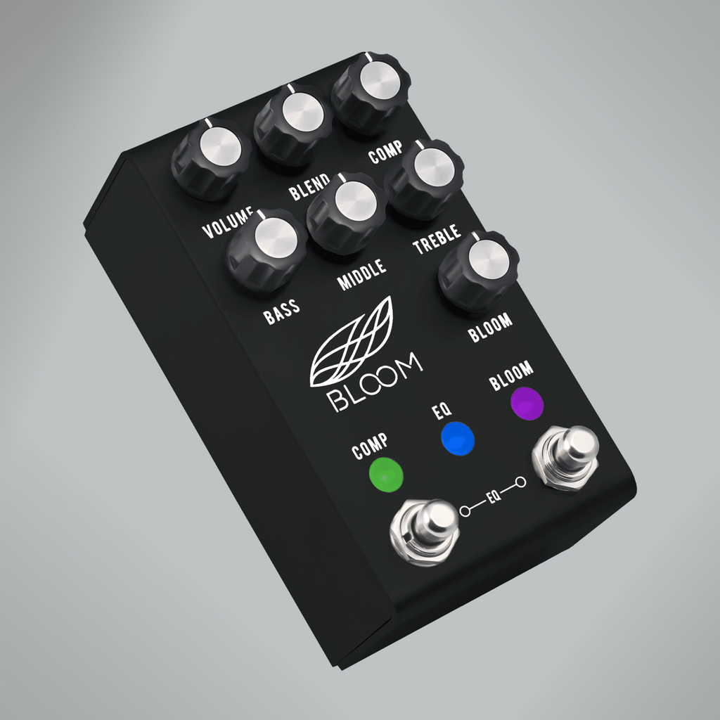 Jackson Audio Bloom Comp Eq Bloom Echoinox