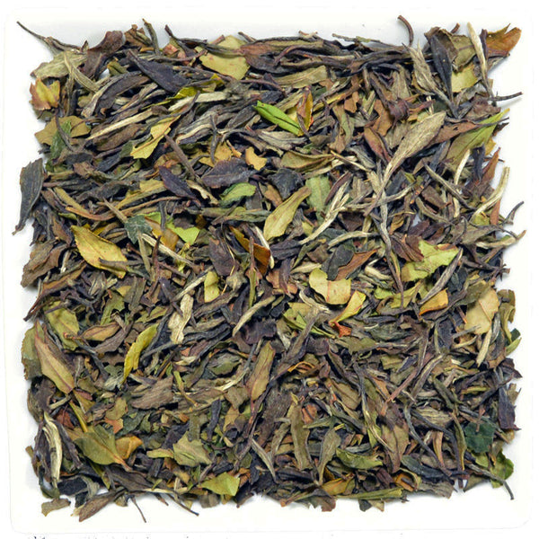 Tribute Eyebrow White Tea, White Tea - GROENSBJERG TEHANDEL
