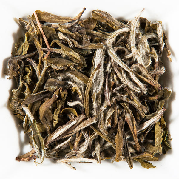 China WHITE SNOW BUD, White Tea - GROENSBJERG TEHANDEL