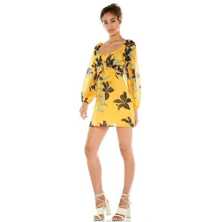 Daylily Mini Dress