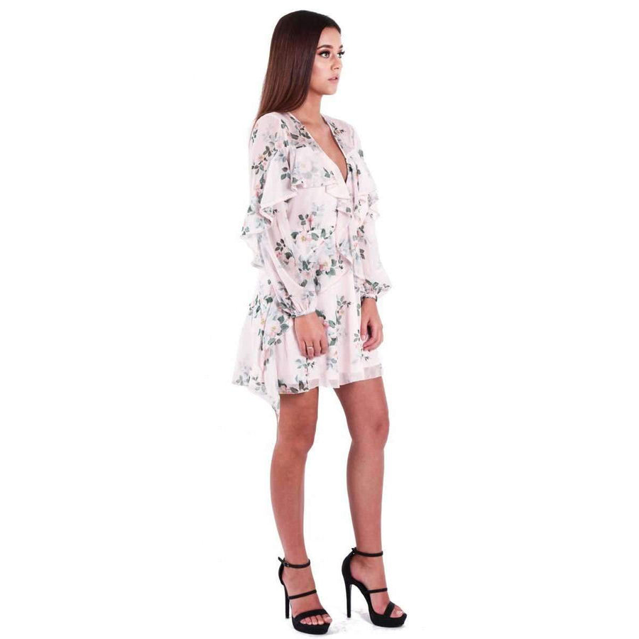 Wild Thyme Long Sleeve Mini Dress