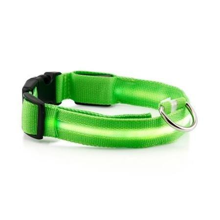 Safety LED Dog Collar - Farertop