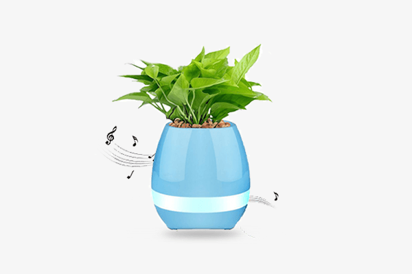 LED Touch Plant Speaker