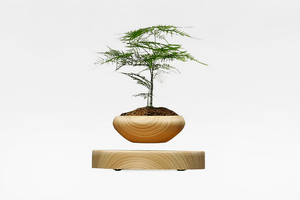 Magnetic Suspended Levitation LED Flower Pot - Farertop
