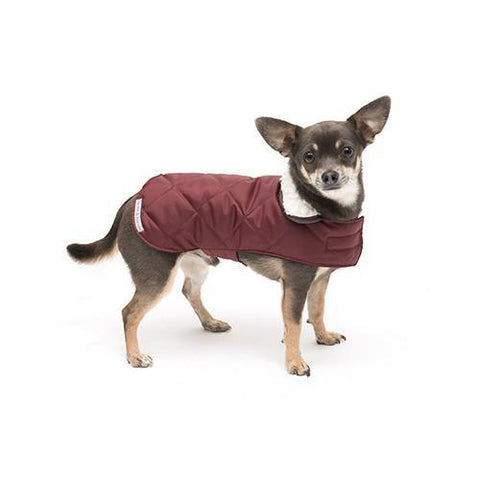 Luxury Grape Quilted Coat  - Mutts and Hounds