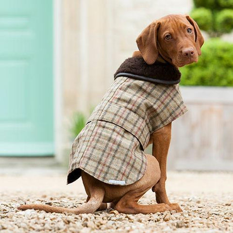Luxury Balmoral Check Tweed Coat  - Mutts and Hounds