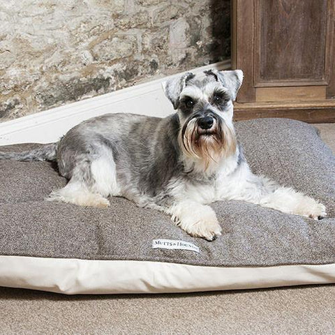 Luxury Herringbone Tweed Pillow Dog Bed  - Mutts and Hounds