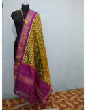 Paachi Green with Purple Border ikkat Silk Dupatta