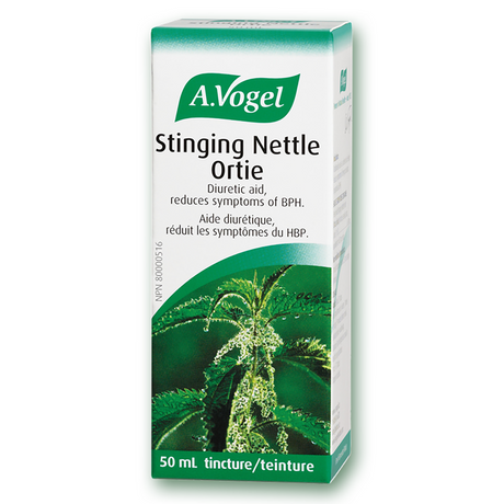 Stinging Nettle Ortie