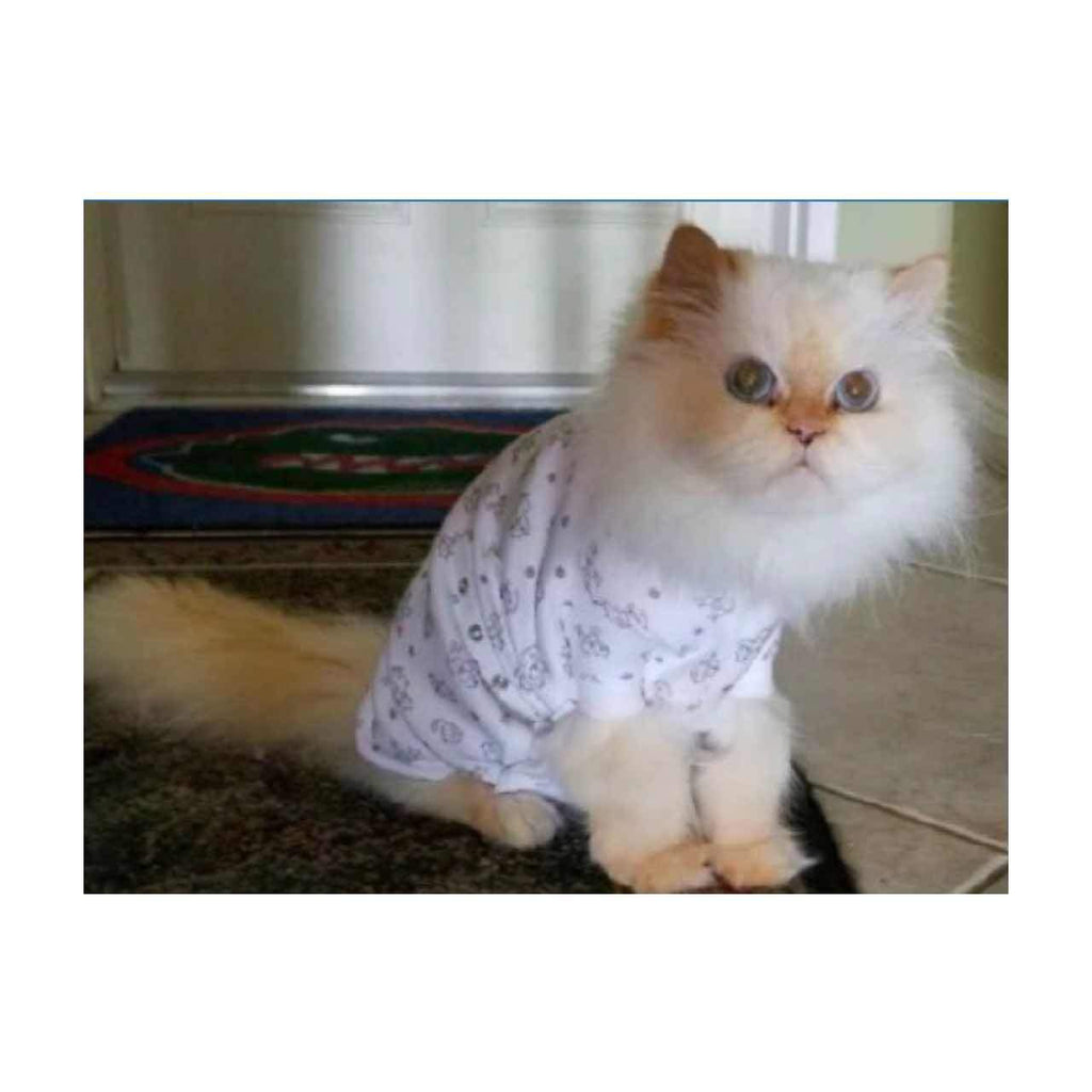 A white Persian cat is wearing the Cover Me by Tui Cat Cone Alternative in kitty print