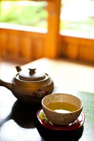 Looking To Lose Weight ? Green Tea Could Help