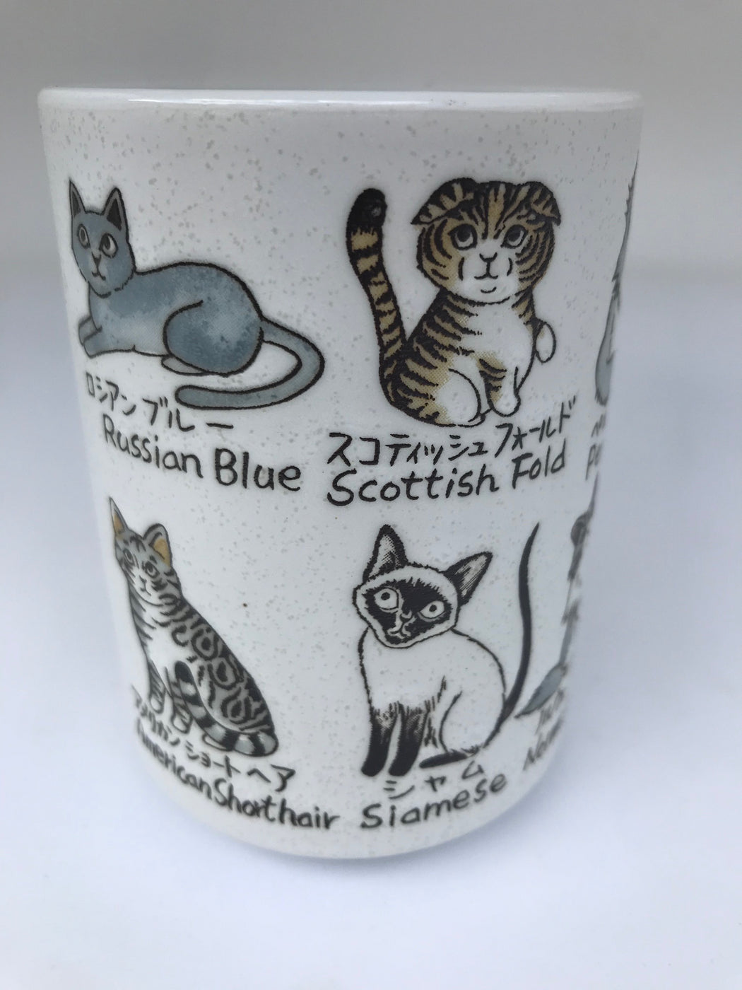 Cat cup all breeds