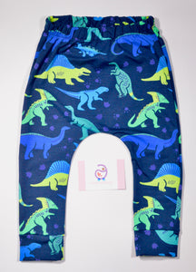 Dinosaur Jersey Leggings