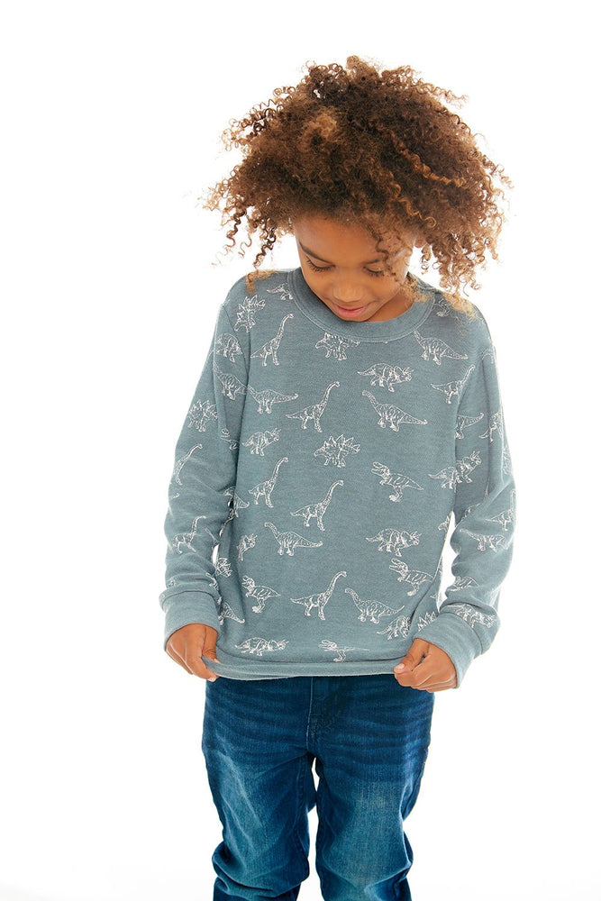 Chaser, Boy - Shirts,  Chaser - Dino Dance Long Sleeve Knit