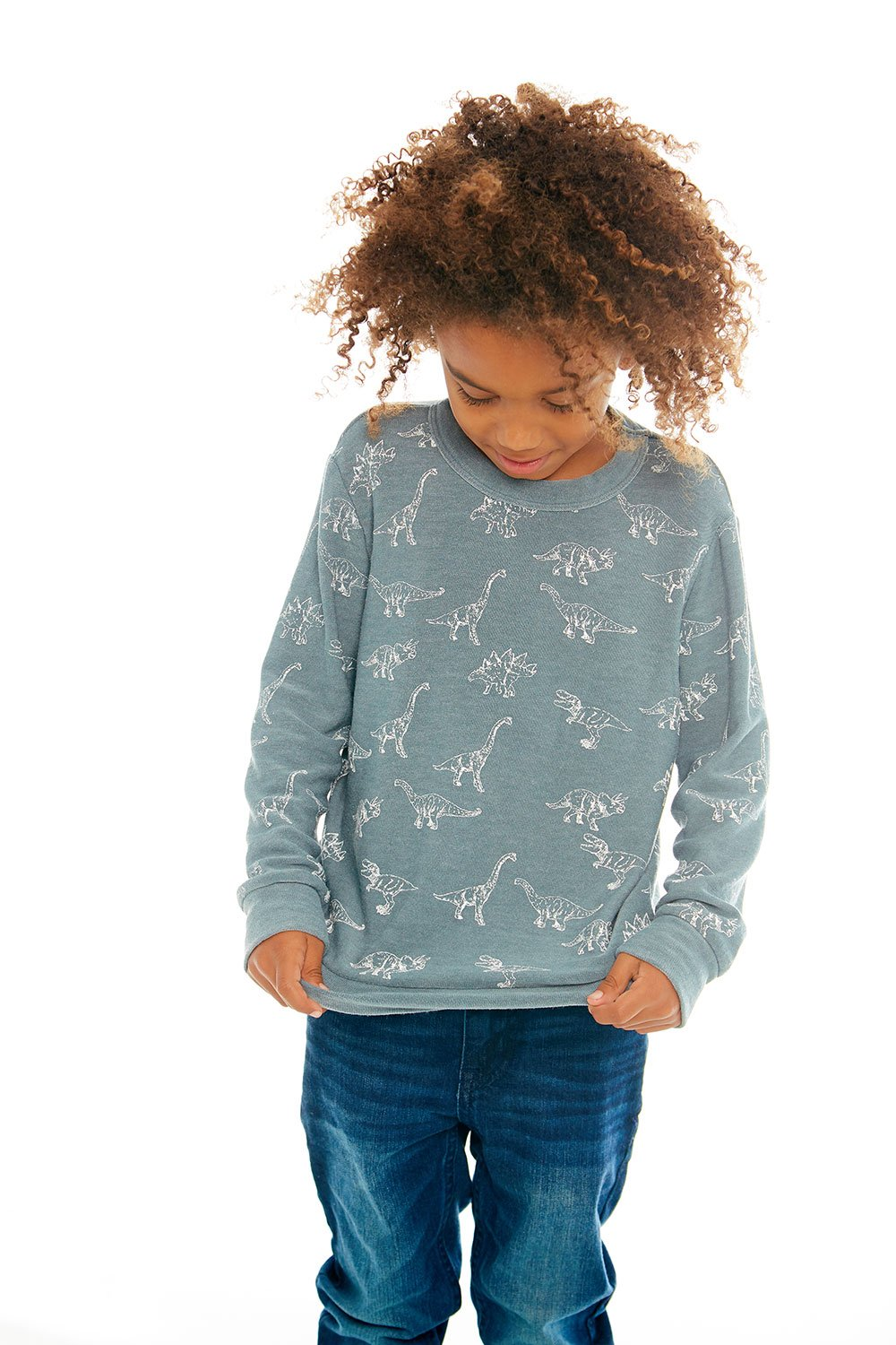 Chaser - Dino Dance Long Sleeve Knit