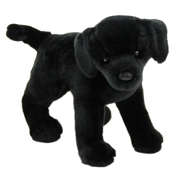 Eden Lifestyle, Gifts,  Black Lab