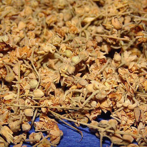 Linden Dried Flowers - Lime Bush Tilia Tree - Tisane