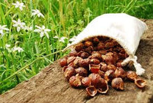 Soap Nuts- Natural Laundry Detergent - Soap Berries-Sacred Soul Essentials