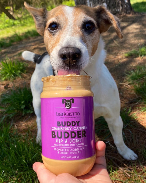 Cranberry Canine BUDDY BUDDER (hip + joint)