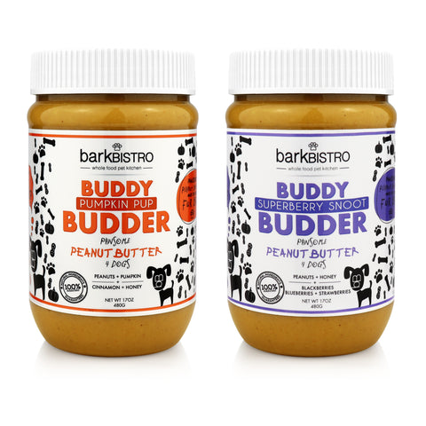 SuperBerry Snoot + Pumpkin Pup BUDDY BUDDER (SET OF 2)