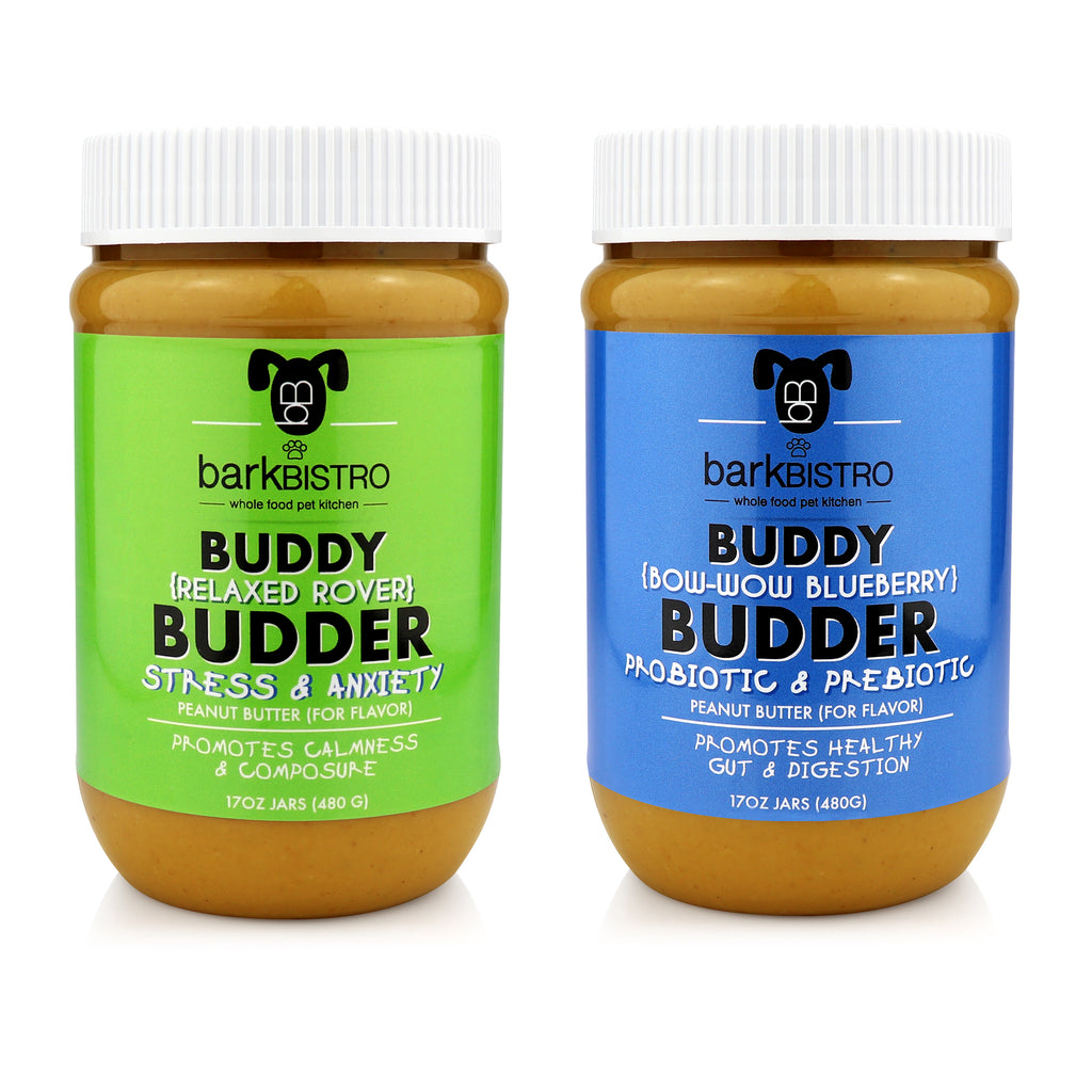 Relaxed Rover + Bow-Wow Blueberry BUDDY BUDDER (SET OF 2)