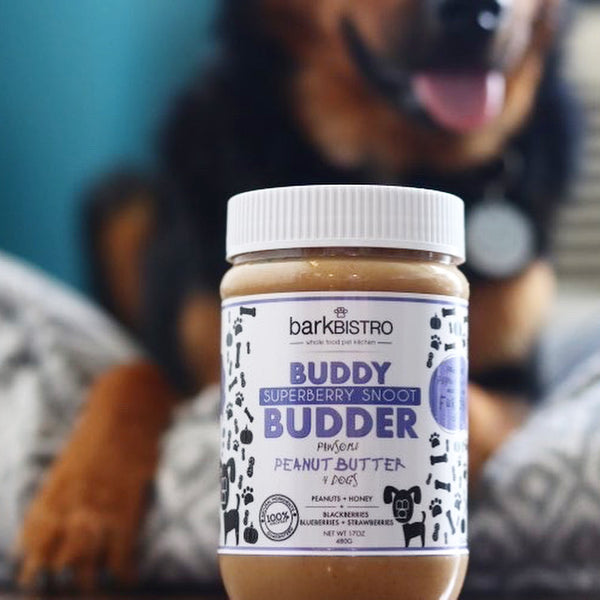 Superberry Snoot BUDDY BUDDER