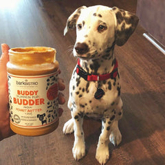 Superberry Snoot + Pumpkin Pup + Ruff Ruff Raw BUDDY BUDDER (SET OF 3)