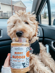 Pumpkin Pup + Ruff Ruff Raw BUDDY BUDDER (SET OF 2)