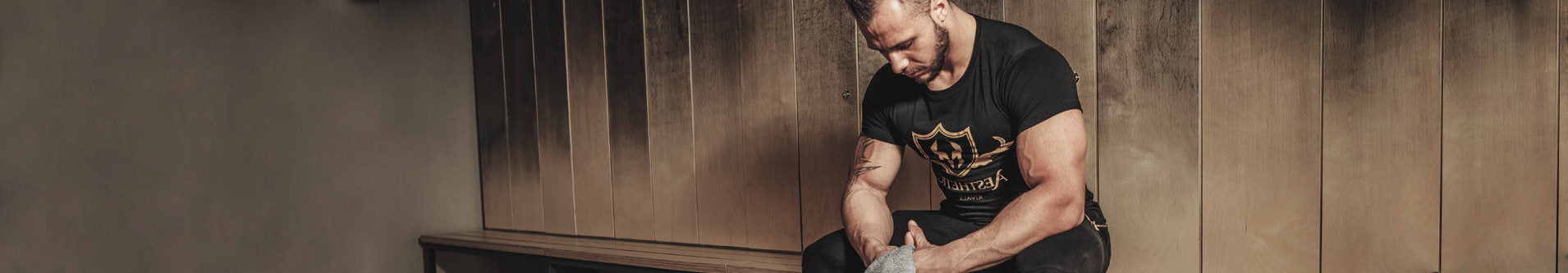 Section banner
