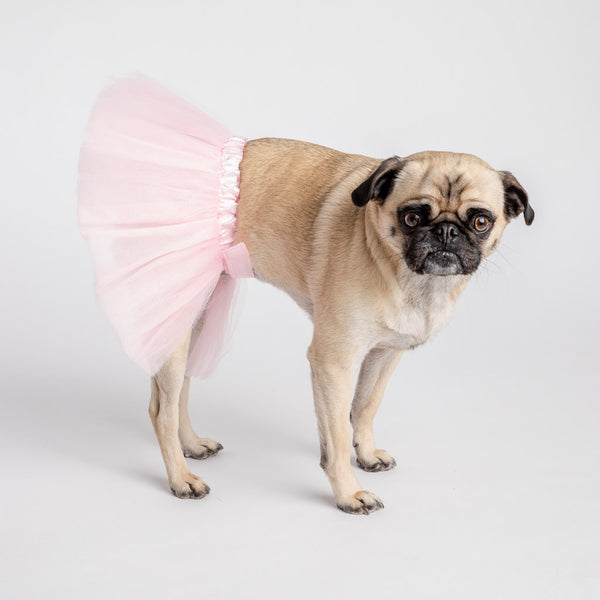 Dog Wedding Costume -  Pink Skirt