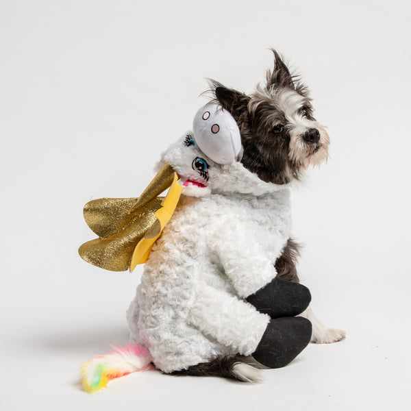 Unicorn Cape with Hood