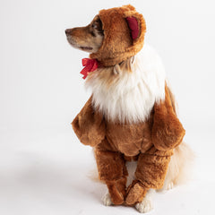 Bear Dog Costume