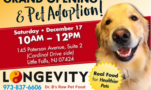 Grand Opening and Pet Adoption!