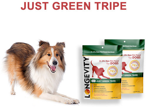 Green Tripe - Longevity Raw Pet Foods