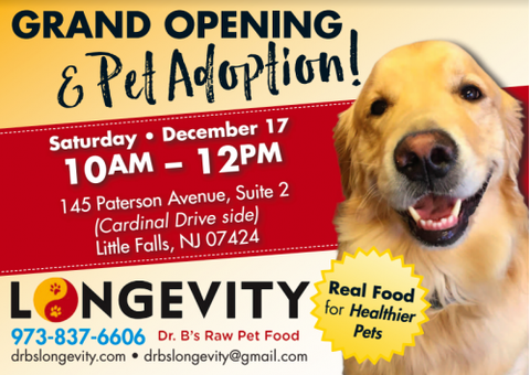Grand Opening Raw Dog Food