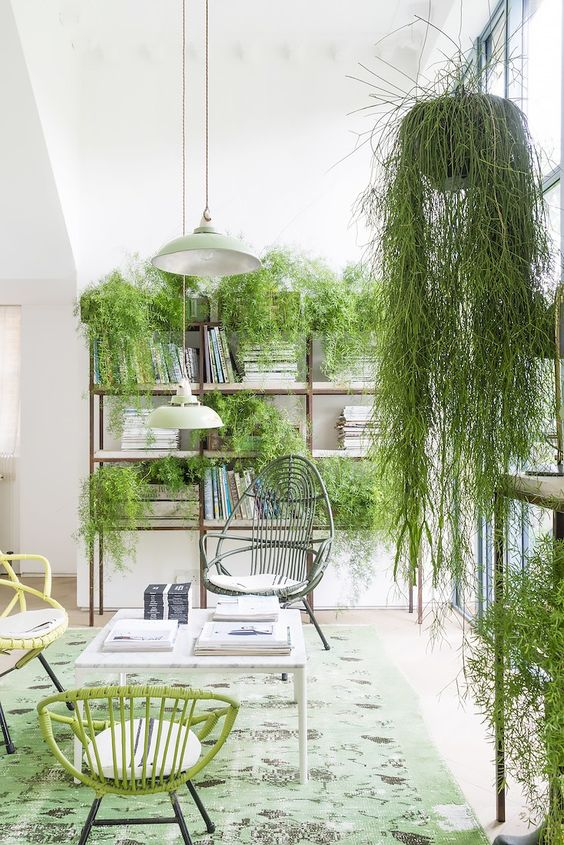 Pantone Colour Of The Year: Greenery