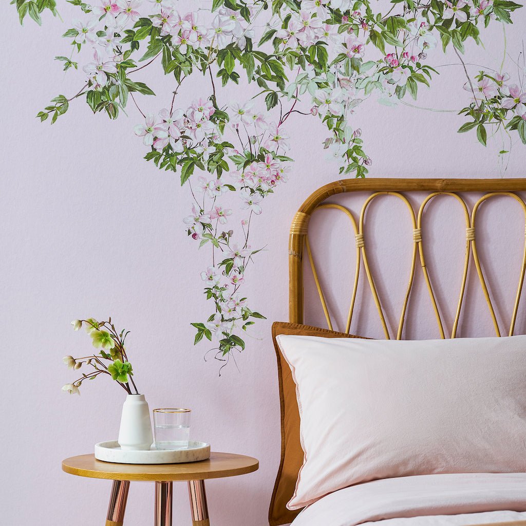 Sian Zeng Clematis Wallpaper in Pink