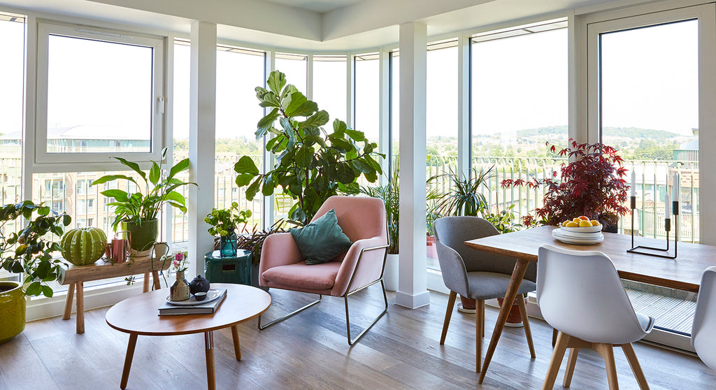 Sian Zeng's bright and airy living room, featuring the Frame Velvet Armchair from MADE