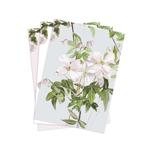 Clematis Mural Wallpaper  Samples