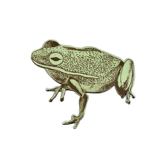 Fun Green Frog Magnet, Designer, Fridge.