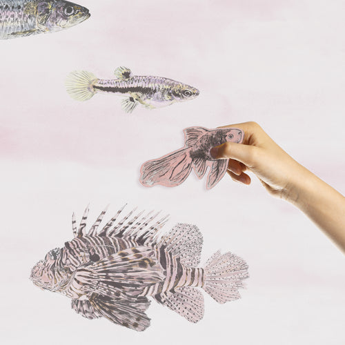 Magnetic Fish Wallpaper - Pink