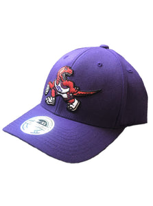 Toronto Raptors Ground Floor Cap (Purple)